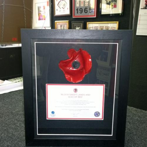 Poppy and Certificate - black frame